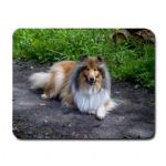 Fabric Personalised Photo Mouse Mat (rectangle, round)